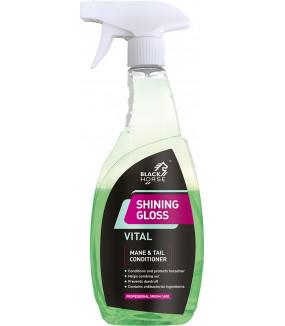 SHINING GLOSS VITAL