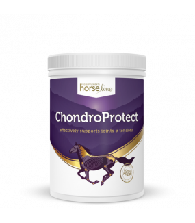 Horseline PRO ChondroProtect